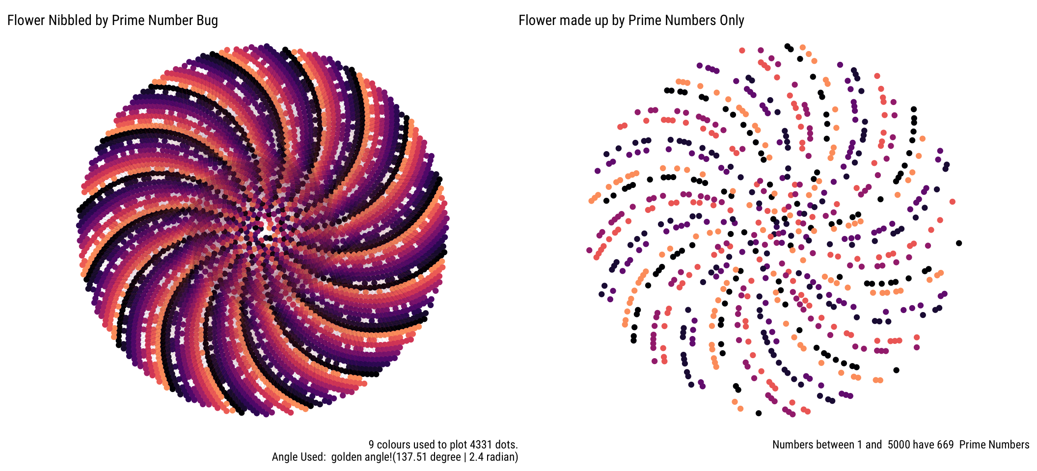 Phyllotaxis Sprial and Prime Numbers – Experiment